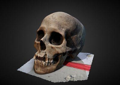 Cráneo chachapoya – Choctamal