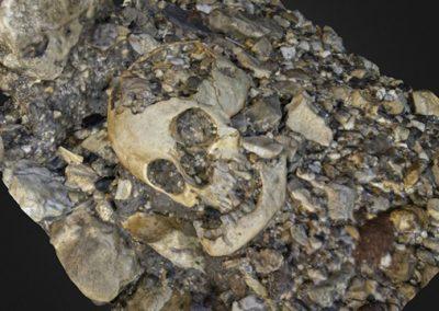 Craneo chachapoya – Cueva de Intimachay