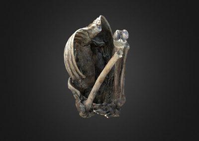 Cuerpo momificado – Diablowasi